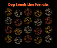 Races de chien Photo libre de droits