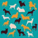 Races de chien de vecteur Photo libre de droits
