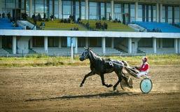 Races. Horse races in Kiev, Ukraine Stock Image