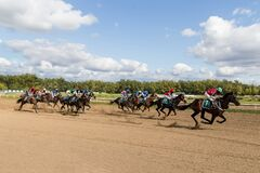 Racetrack horse racing jockey approaching the finish line, sports with horses