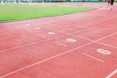 Racetrack in sport arena with grass Stock Photography