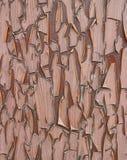 Rachado do tempo murchou o plástico velho & o x27; como o wood& x27; etiqueta Fotografia de Stock