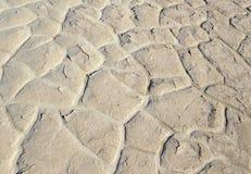 Rachado seco e endurecido lakebed no deserto Fotografia de Stock