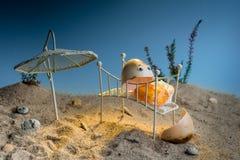 Rachado sobre o ovo roasted que encontra-se para baixo na cama na praia falsificada ensolarada fotos de stock royalty free