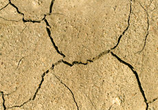 Rachaduras na terra Imagem de Stock