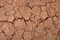 Rachaduras na terra seca Imagem de Stock Royalty Free