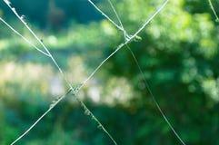 Rachaduras no vidro foto de stock