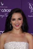 Rachael Leigh Cook at the 2012 Chrysalis Butterfly Ball, Private Location, Los Angeles, CA 06-09-12 Stock Photography