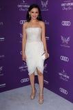 Rachael Leigh Cook bij de Bal van de Vlinder van de Pop van 2012, Privé Plaats, Los Angeles, CA 06-09-12 Royalty-vrije Stock Fotografie