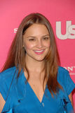 Rachael Leigh Cook,The Used Stock Photo