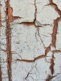 Rachando e descascando a pintura de uma parede de madeira imagem de stock royalty free