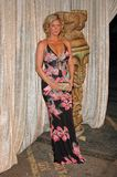Rachel Hunter Royaltyfri Foto