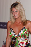 Rachel Hunter Stock Image