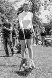Rachel Riley che giudica un'esposizione canina sulla brughiera di Hamstead a Londra fotografia stock libera da diritti