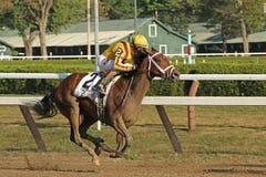 Rachel's Valentina Wins The Spinaway Stakes. SARATOGA SPRINGS, NY - SEPT 5: Jockey John Velazquez pilots Rachel's Valentina to victory in The Spinaway Stakes at Royalty Free Stock Images