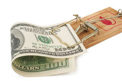 rachunku dolarów ostrości sto mousetrap selekcyjny Zdjęcia Stock