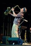rachunku Evans muzykalnego występu projekta soulgrass Obraz Royalty Free