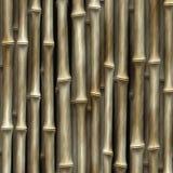Racimo de bambú Imágenes de archivo libres de regalías