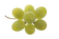 Racimo de la uva blanca Fotografía de archivo libre de regalías