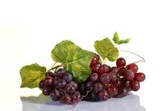 Racimo de la uva con las hojas Imagen de archivo