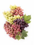 Racimo de la uva con las hojas aisladas Imagen de archivo
