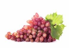 Racimo de la uva con las hojas aisladas Foto de archivo