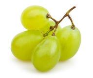 Racimo de las uvas blancas pequeño fotos de archivo libres de regalías