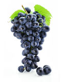 Racimo de uva azul aislado Fotografía de archivo