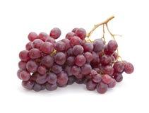 Racimos o uvas púrpuras Fotos de archivo libres de regalías