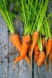 Racines alimentaires de racine Image stock