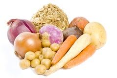 racines alimentaires de racine Photo libre de droits