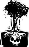 Racines d'arbre de crâne Photos stock