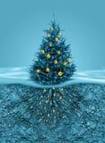 Racines d'arbre de Noël dans le sol dessous Photos stock