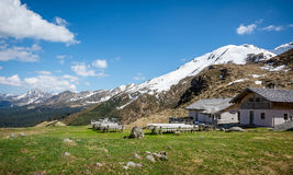 Racines dolina w Południowym Tyrol, Włochy Zdjęcie Royalty Free
