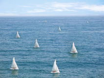 Racing. Sailboats royalty free stock images