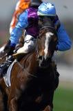 Racing Stock Photography