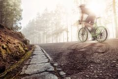 Racing bicycle on a forest road. A professional cyclist in motion on an old forest road. Foggy atmosphere with the sun coming trough Royalty Free Stock Images