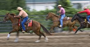 Racing Cowboys at Rodeo Panning and Motion Blur Stock Images