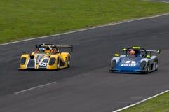Racing Driver Stock Photography