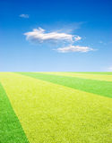 Racing  field under sky. Racing field with green grassland under a blue sky and white cloud Royalty Free Stock Image