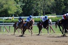 Racing for the finsh line,summer 2012,Saratoga Springs,New York. Jockeys on mounts racing towards the finish linekicking up dirt at the Saratoga Springs,New York Royalty Free Stock Photo