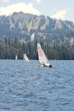 Racing in the High Sierra Regatta Royalty Free Stock Image