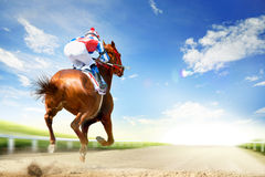 Racing horse coming first to finish line Stock Image