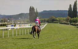 Racing horse coming first to finish line. In summer day, rider on the racing circuit competition Stock Images