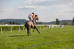 Racing horse coming first to finish line. In summer day, rider on the racing circuit competition Royalty Free Stock Photos