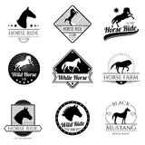 Racing horse, running mare vector vintage logos and labels set Stock Photography