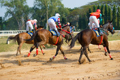 Racing horses starting a race Stock Photography