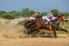 Racing horses starting a race Royalty Free Stock Photo