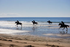 Racing horses on the beach Stock Image