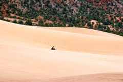 Racing in Pink sands dune Royalty Free Stock Images